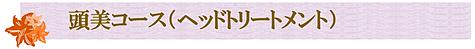 頭美コース(ヘッドトリートメント)