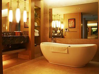 お風呂にいれて、おうちで温泉