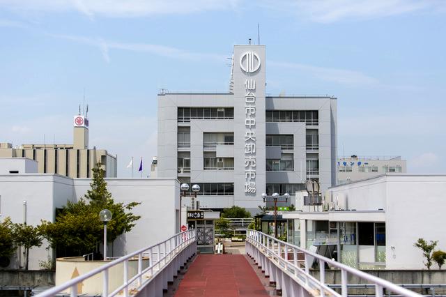 仙台市中央卸売市場