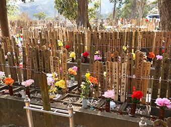 太江寺の供養個別埋葬
