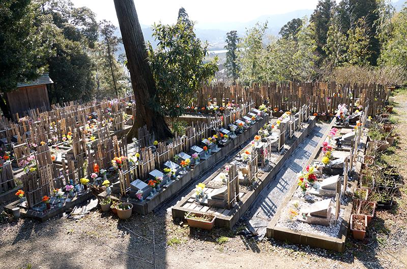 愛受院 ペット墓地