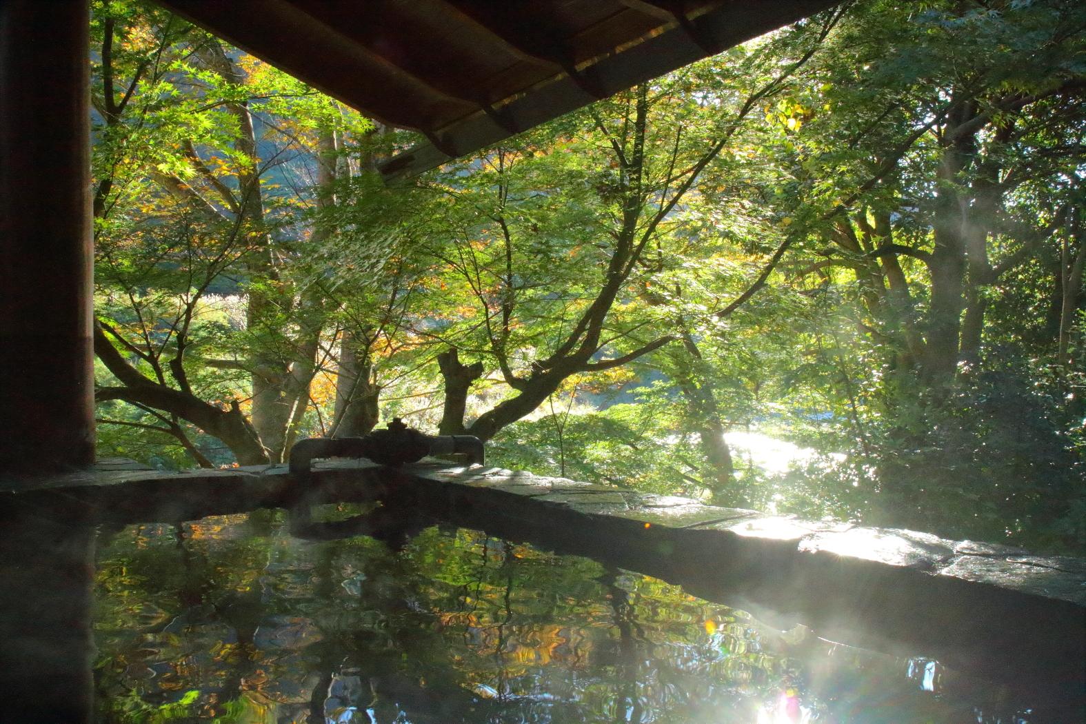 薬草風呂1